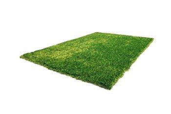 Diadeem  groen