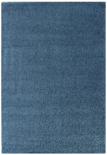 Vloerkleden Calys 170 Blauw